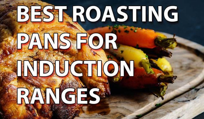Best Roasting Pan for Induction Ranges